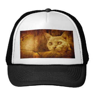 Cave Painting Mesh Hats