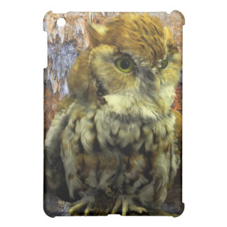 Cavern Owl Watch iPad Mini Cover