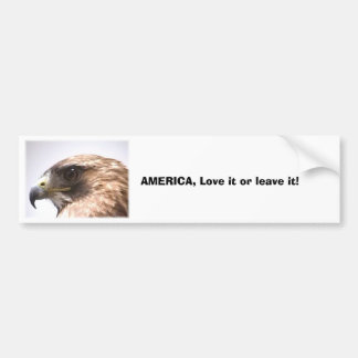 cd2 020, AMERICA, Love it or leave it! Bumper Sticker