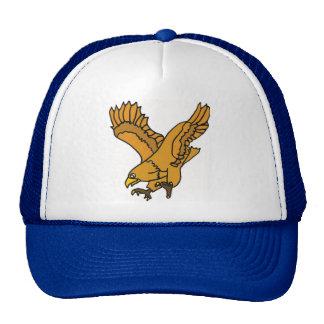CD- Soaring Eagle Hat
