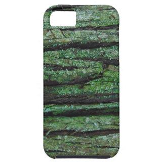 Cedar Bark iPhone 5 Cover