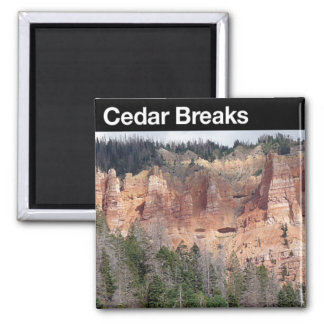 Cedar Breaks NM Magnet