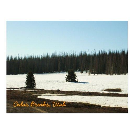 Cedar Breaks, Utah Postcards