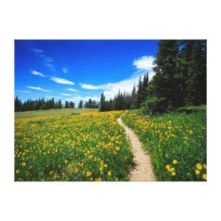 Cedar Breaks Wildflowers Canvas Print