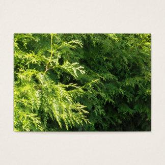 Cedar Hedge Business Card