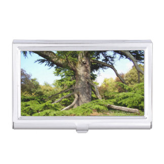 Cedar-of-Lebanon Tree Business Card Holder