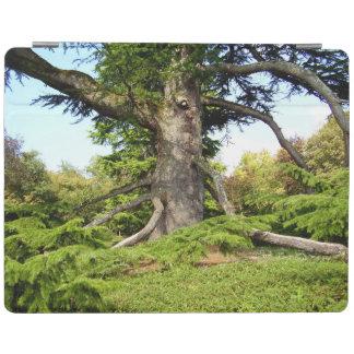 Cedar-of-Lebanon Tree iPad Cover