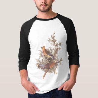Cedar Waxwing Bird T Shirt