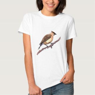 cedar waxwing bird tee shirt