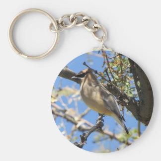 Cedar Waxwing Key Ring