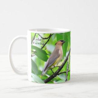 Cedar Waxwing Mug by BirdingCollectibles