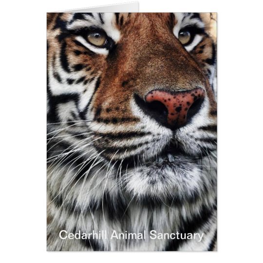 Cedarhill Animal Sanctuary Card