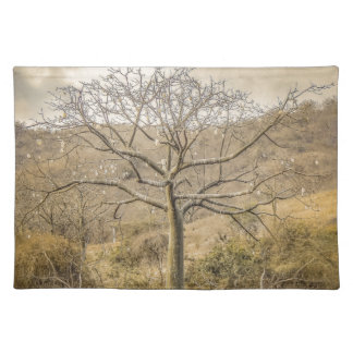Ceiba Tree at Forest Guayas Ecuador Placemat