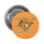 Ceiling Cat is watching you! Button
