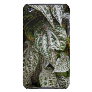 Celebes Pepper Case-Mate iPod Touch Barely There iPod Case-Mate Case