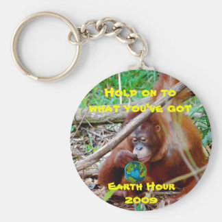 Celebrate Earth Hour Basic Round Button Key Ring