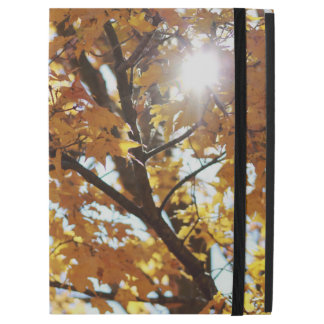 Celebrate Fall iPad Case