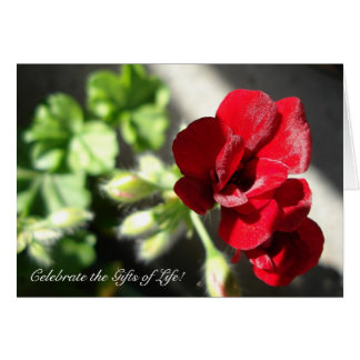Celebrate the Gifts of Life! Greeting Card
