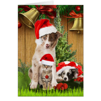 Celebrating Christmas with pet-lovers Card