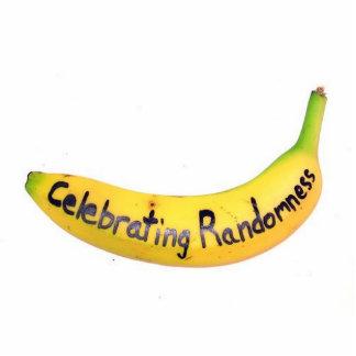 celebrating randomness banana photo sculpture