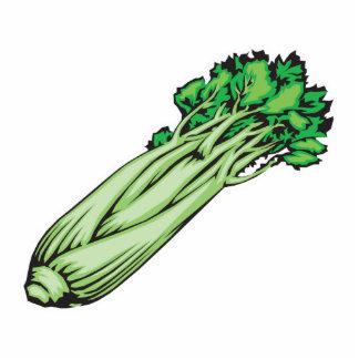 celery photo sculpture