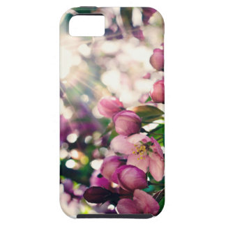 Cell Phone Case iPhone 5 Covers