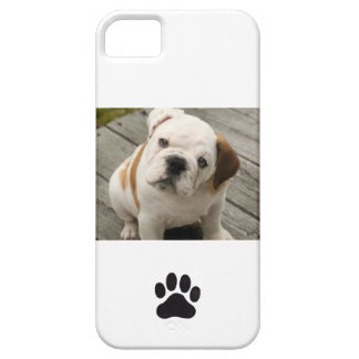 Cell phone cover with English Bulldog pup iPhone 5 Cases