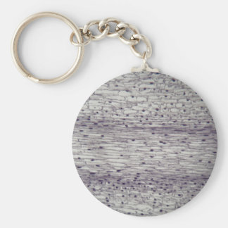 Cells of a root under the microscope. key ring
