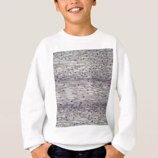 Cells of a root under the microscope. sweatshirt