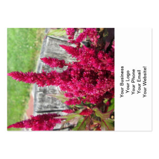 Celosia Red Rustic Fence Garden Business Card