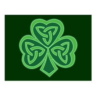 Celtic Knot Shamrock Postcard