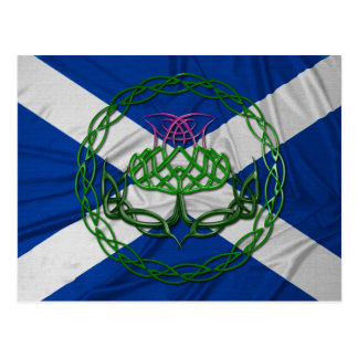 Celtic Knot Thistle And Flag Postcard