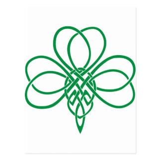 Celtic Shamrock Postcard