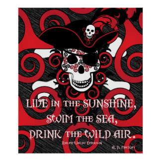 Celtic Spiral Pirate Posters