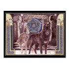 Celtic Wolf Magic Postcard