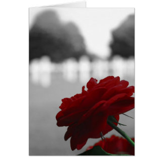 Cemetery & Red Rose - Memorial Day Card