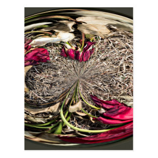 Cemetery Roses Flower Orb Postcard