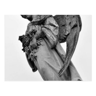 Cemetery Statues Angels Postcard