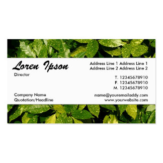 Center Band 037 - Spotted Laurel Business Card Templates