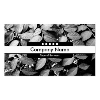 Center Band 5 Spots - Leaves Pack Of Standard Business Cards