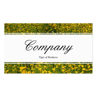 Center Band (edged) - Bed of Yellow Daisies Business Card Templates