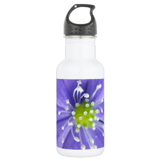 Center of a blue flower with white stamps 532 ml water bottle
