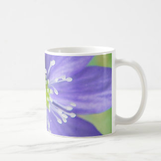 Center of a blue flower with white stamps basic white mug
