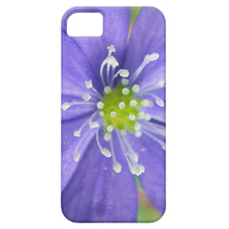 Center of a blue flower with white stamps iPhone 5 cover