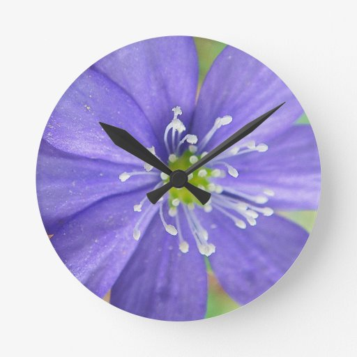 Center of a blue flower with white stamps wall clock