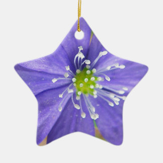 Center of a blue flower with white stamps ceramic star decoration