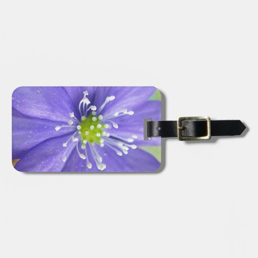 Center of a blue flower with white stamps tag for luggage