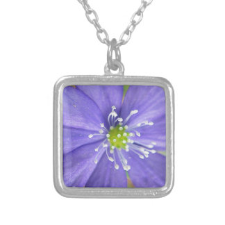 Center of a blue flower with white stamps jewelry