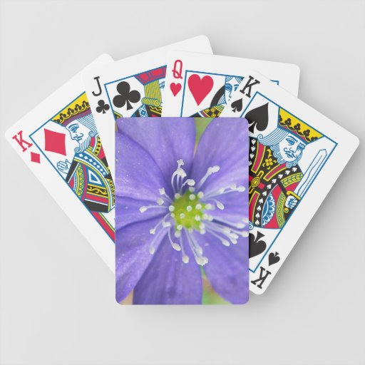 Center of a blue flower with white stamps deck of cards