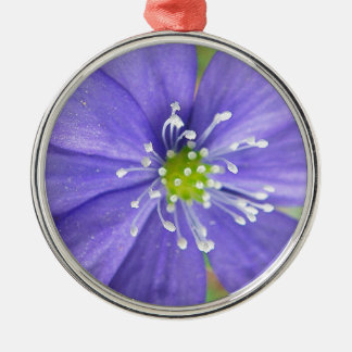 Center of a blue flower with white stamps Silver-Colored round decoration